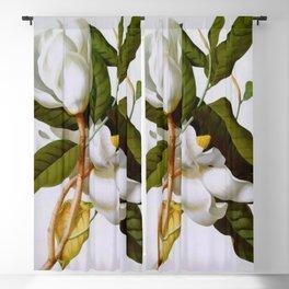 Vintage Botanical White Magnolia Flower Art Blackout Curtain