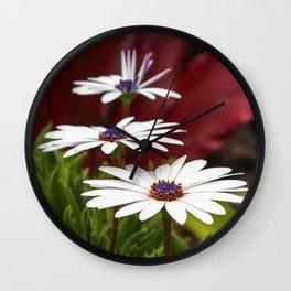 White Dasies Wall Clock
