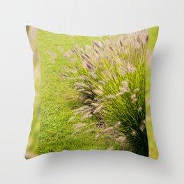 Grass clump Pennisetum alopecuroides Throw Pillow