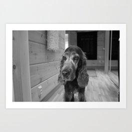 Sad Dog Art Print