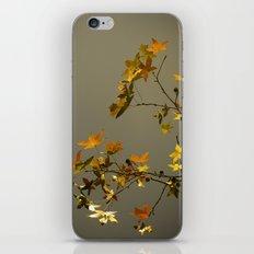 Autumn iPhone Skin