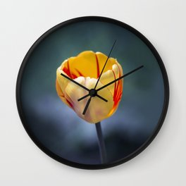Colorful Tulip Wall Clock