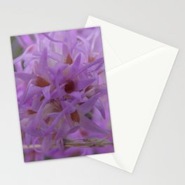 The Northwestern Blazing Star Stationery Cards