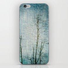 Minimalism ~ Perched iPhone & iPod Skin