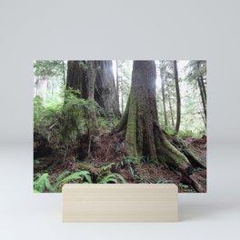 Giant Redwoods Rainforest 04 Mini Art Print