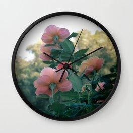 Reaching Roses (Balboa Park) Wall Clock