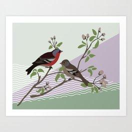 loving chaffinches Art Print