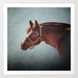 Drawing portrait  horse 11 Art Print