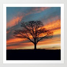Branching Silhouette Art Print