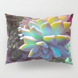 Succulent Rainbow Pillow Sham