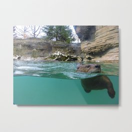 Otter you up to? Metal Print