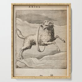 Hugo de Groot's Syntagma Arateorum 1600 - 43 Aries Serving Tray