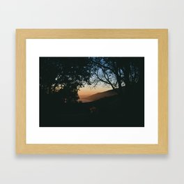 Sunset Between the Trees Framed Art Print