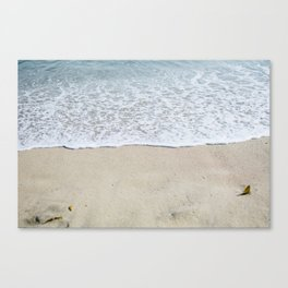 seabright Canvas Print