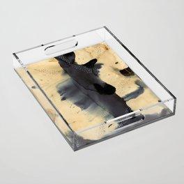 Washes Acrylic Tray