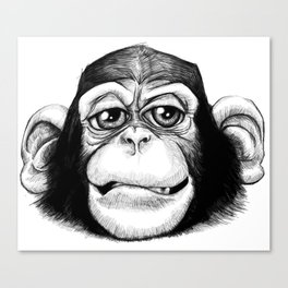 Cheeky baby chimp black and white. Canvas Print
