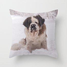 St Bernard dog on the snow Throw Pillow