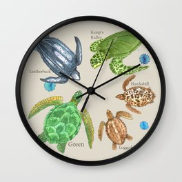 Sea Turtle Types Wall Clock