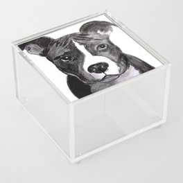 Pit Bull Dogs Lovers Acrylic Box
