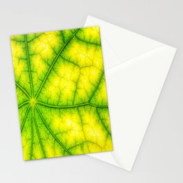 photosynthesis leaf green structure Stationery Cards