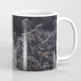 Cold Morning Frost. Dutch Winter. Netherlands. Fine Art Travel Print. Wall Art. Coffee Mug