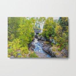 Temperance River State Park, Minnesota 1 Metal Print
