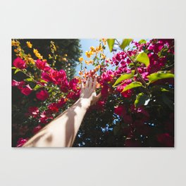 #handadventures in spring Canvas Print