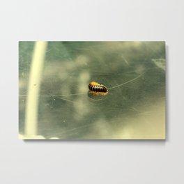 Catterpillar Metal Print