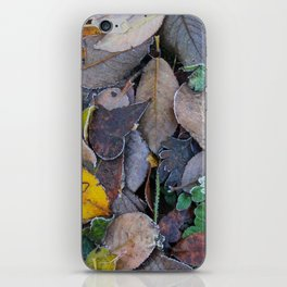 Frosty Forest Floor iPhone Skin