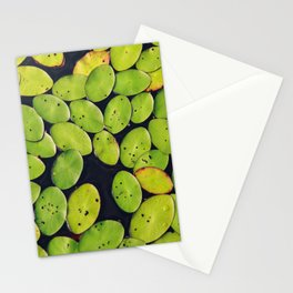 Acqua Green Stationery Cards
