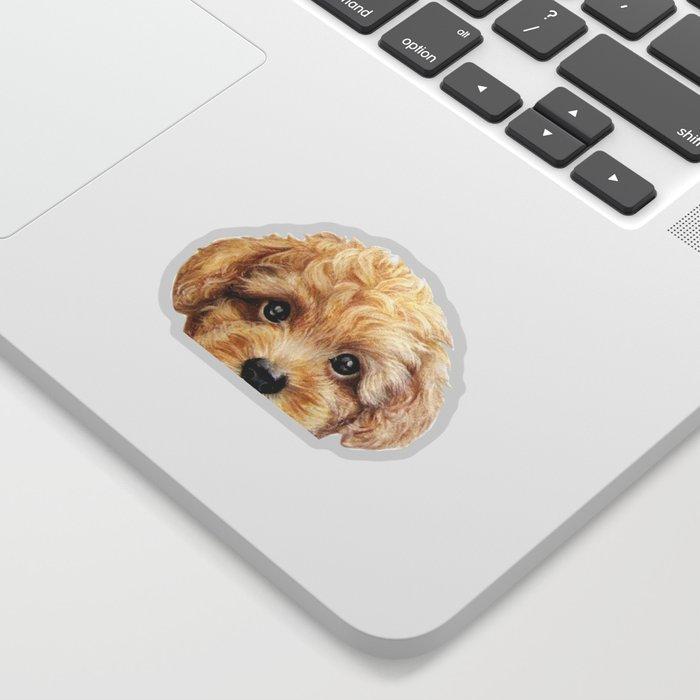 Toy poodle Dog illustration original painting print Sticker