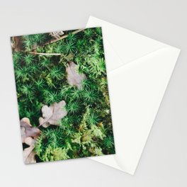 Pine Forest Moss Stationery Cards