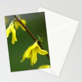 Kidneys on the bushes blossomed. Stationery Cards