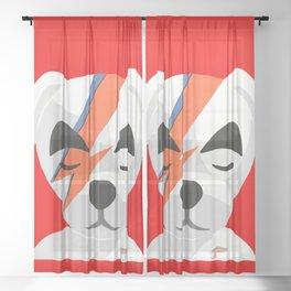 kk bolt Sheer Curtain