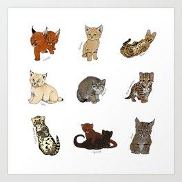 Kittens Worldwide Art Print