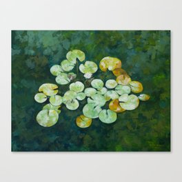Tranquil lily pond Canvas Print