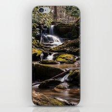 Mill Creek Falls iPhone & iPod Skin