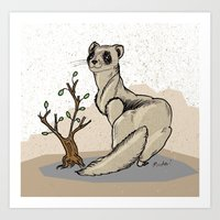 ferret Art Prints featuring Ferret by Madmi