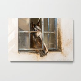 Waiting for Her Metal Print