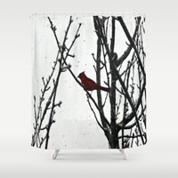cardinal Shower Curtains featuring Cardinal by Emma Nettles
