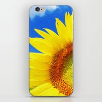 sunflower iPhone & iPod Skins featuring SUNFLOWER by Ylenia Pizzetti