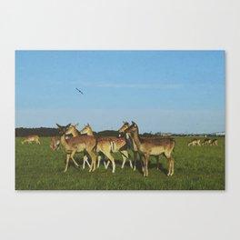 Oh Deer (Artistic/Alternative) Canvas Print