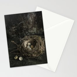 Forgotten nest with eggs Stationery Cards