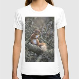 Cute little wild woodland red squirrel in the branches T-shirt