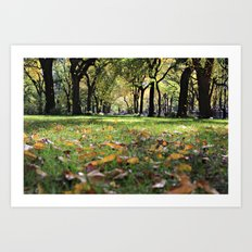 Leaves on Grass 2 Art Print