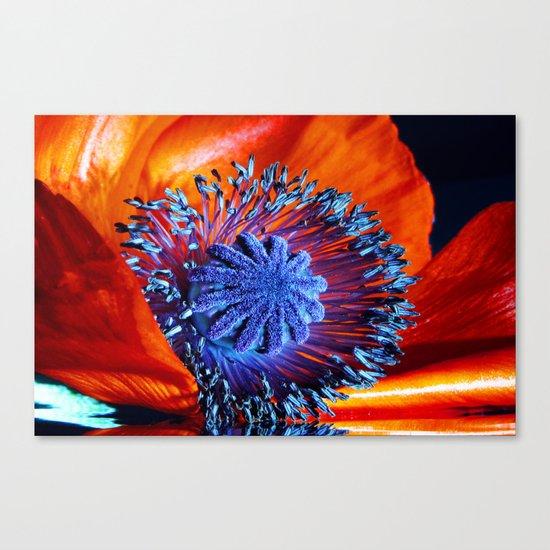 poppy dreams Canvas Print
