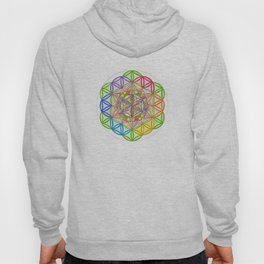 Hidden Jewel - The Rainbow Tribe Collection Hoody