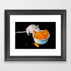 Perla the hairless rat Framed Art Print