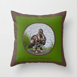 Eagle - Immature Baldy Throw Pillow