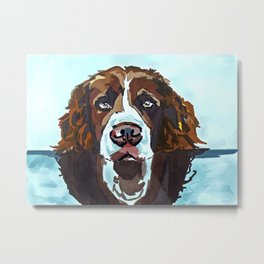 Swimming Dog Portrait Metal Print